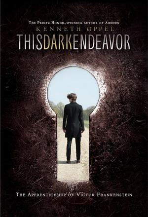 《黑暗的努力》小说封面