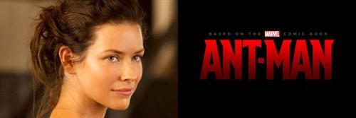 伊万杰琳·莉莉(Evangeline Lilly)有望出演《蚁人》女主角