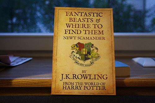 《哈利·波特》外传《神奇动物在哪里》2016年11月18日上映