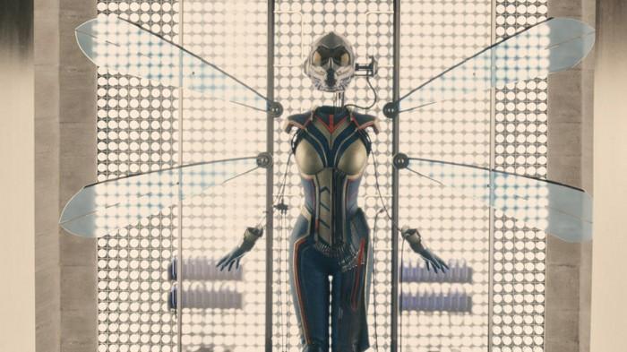 """伊万杰琳·莉莉确认未来将化身漫威超级英雄""""黄蜂"""""""