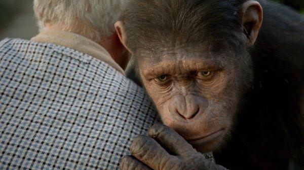 《猩球崛起》再曝中文预告 揭秘人猿大战始末