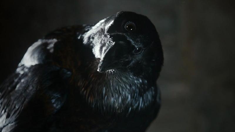 《权力的游戏》第3季最新先导预告(三眼乌鸦/Three-Eyed Raven)