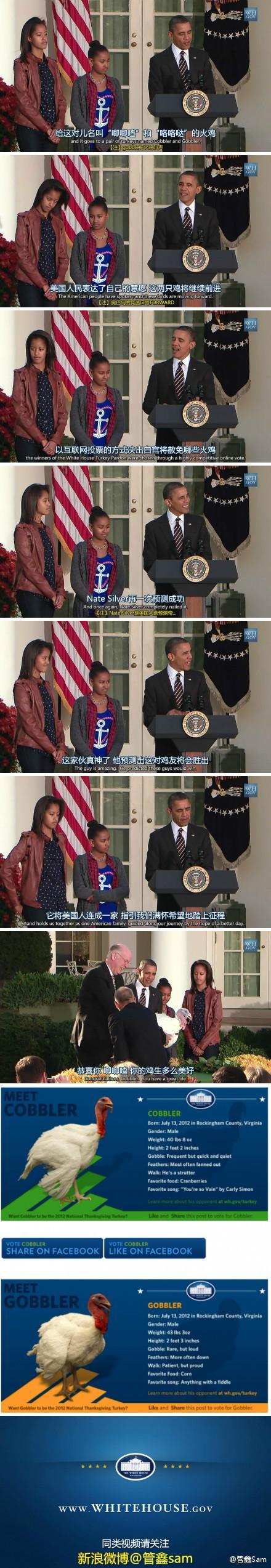 奥巴马感恩节火鸡赦免仪式