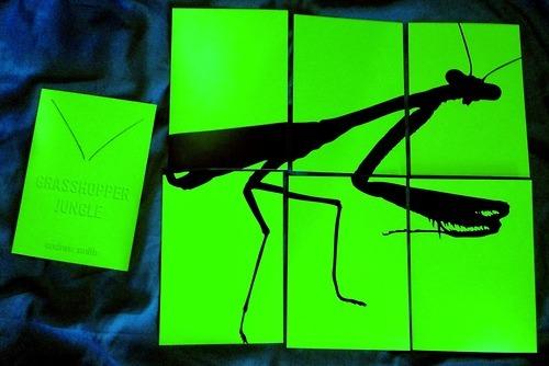 埃德加·怀特将为索尼执导人虫大战电影《蚂蚱丛林》