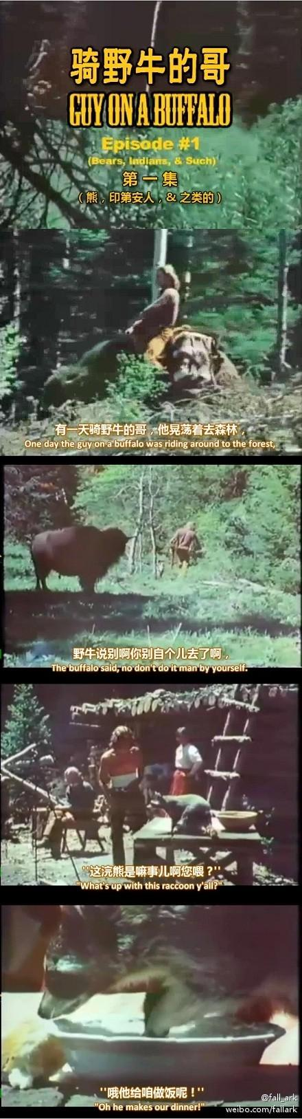 美式无厘头神剧《骑野牛的哥》(Guy On A Buffalo)